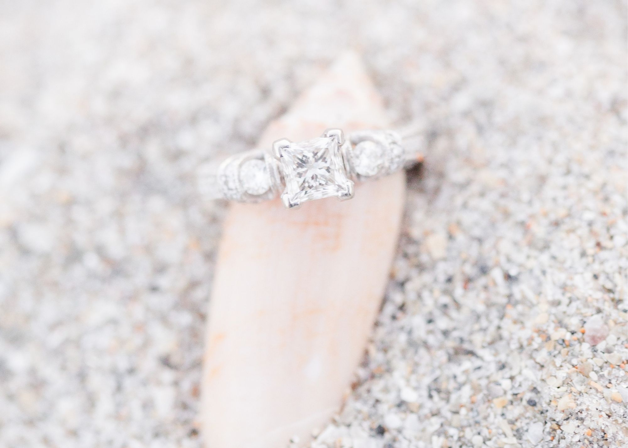 Engaged in NJ Spend Wisely by Dee Kay Events